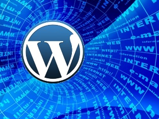 make_your_website_faster_speed_up_guide_tutorials_tools_id32376411_optimize_wordpress.jpg