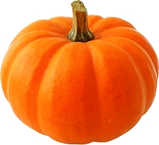 social_media_marketing_roi_return_on_investment_pumpkin_id53099.jpg