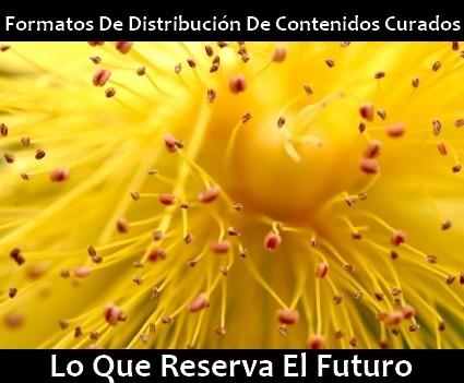 curaduria_de_contenidos_formatos_distribucion.jpg