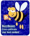buzzboost_logo.jpg