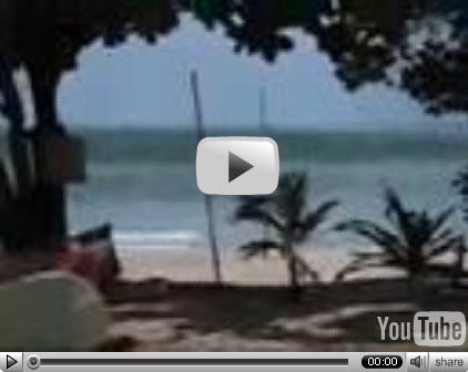 Full Tsunami Video Footage, Pictures, Clips and TV News Stories